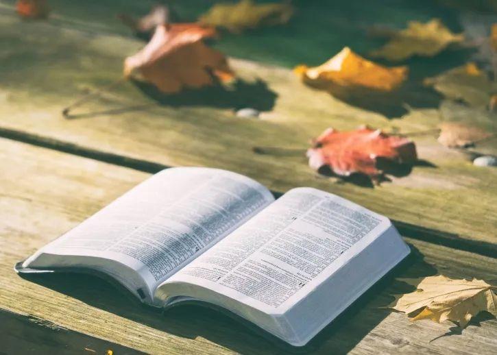 约翰福音21:1-14与创世记第三章之叙事(下)